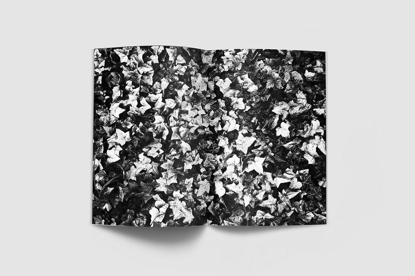 Antracite-cini-boeri-ledera-04